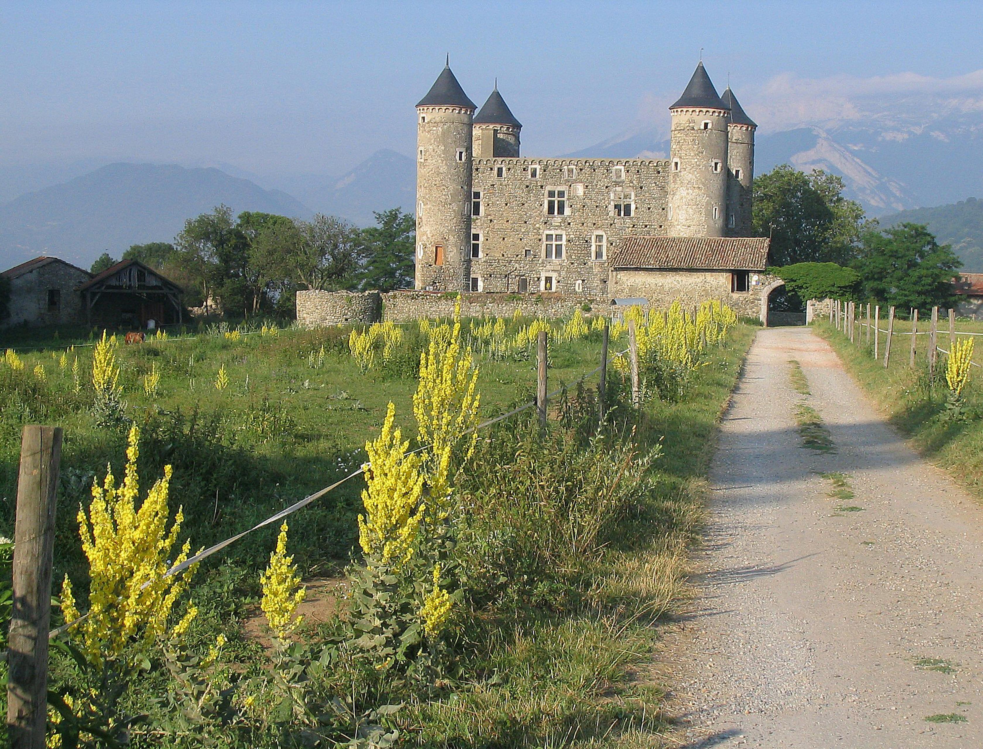 Restauration des plafonds et planchers du château de Bon Repos (Jarrie, Isère)