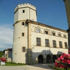 Les Amis du Château de l'Arthaudière (38)