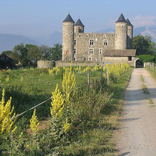 Association de sauvegarde du château de Bon Repos